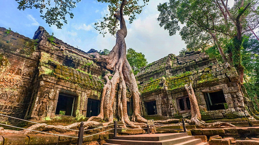 https://fotos.hellotrip.es/camboya/Camboya_Angkor_Templo_Ta_Prohm.jpg