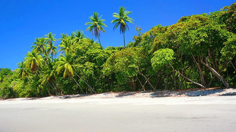 http://fotos.hellotrip.es/costa-rica/Costa_Rica_Guanacaste_playa_2.jpg