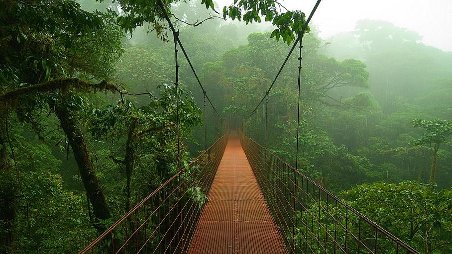 http://fotos.hellotrip.es/costa-rica/Costa_Rica_Monteverde_puente.jpg