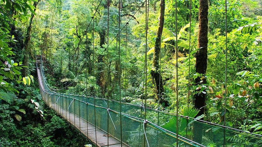 http://fotos.hellotrip.es/costa-rica/Costa_Rica_Monteverde_puente_colgante.jpg