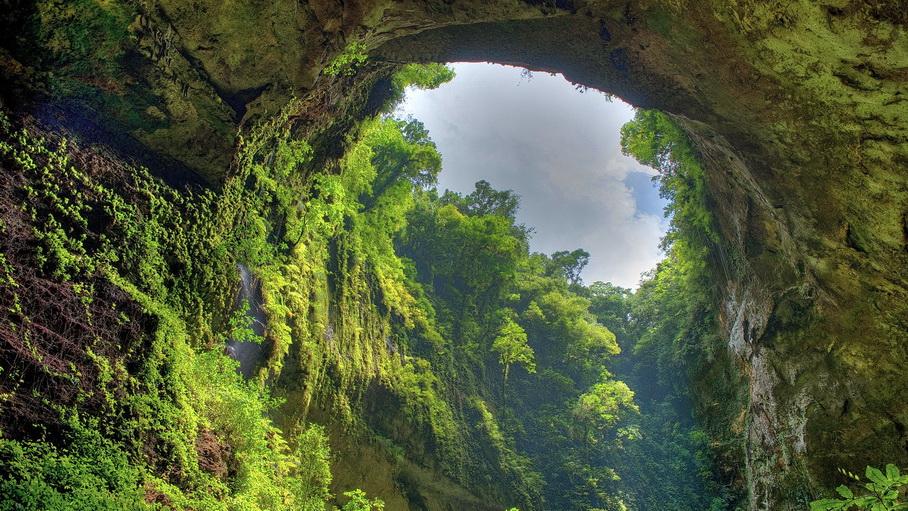 http://fotos.hellotrip.es/costa-rica/Costa_Rica_Monteverde_selva.jpg