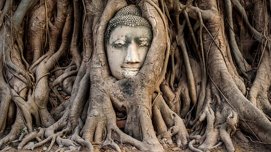 http://fotos.hellotrip.es/tailandia/Tailandia_Ayutthaya_cabeza_buda.jpg
