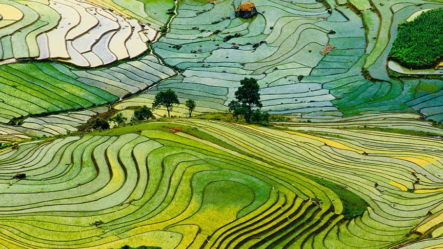 Viaje completo a Vietnam con Sa Pa